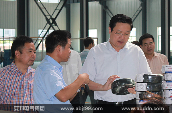 市委书记杨东坡观看电伴热产品