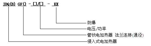 防爆浸入式电加热器型号说明